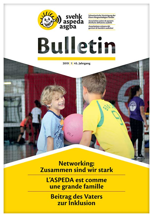 SVEHK Bulletin 2019 Cover web